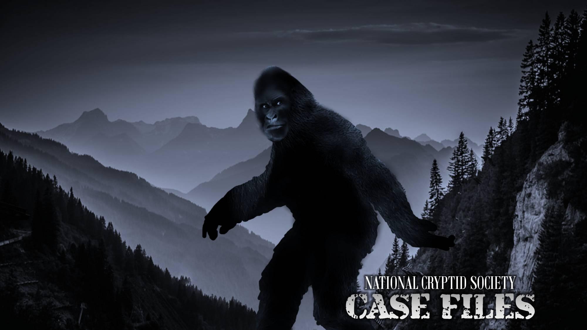 Bigfoot generic image