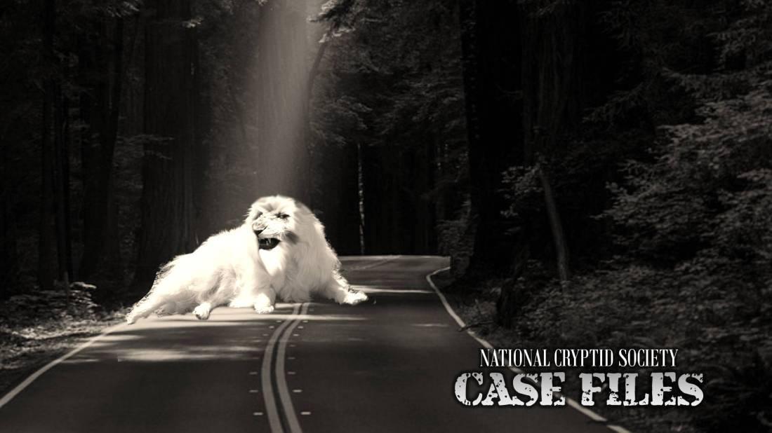 NCS Case File 18