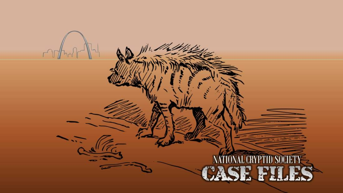 NCS Case File 22