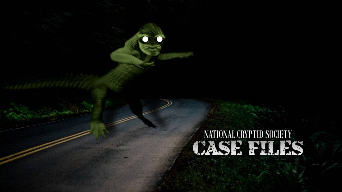 NCS Case File 28
