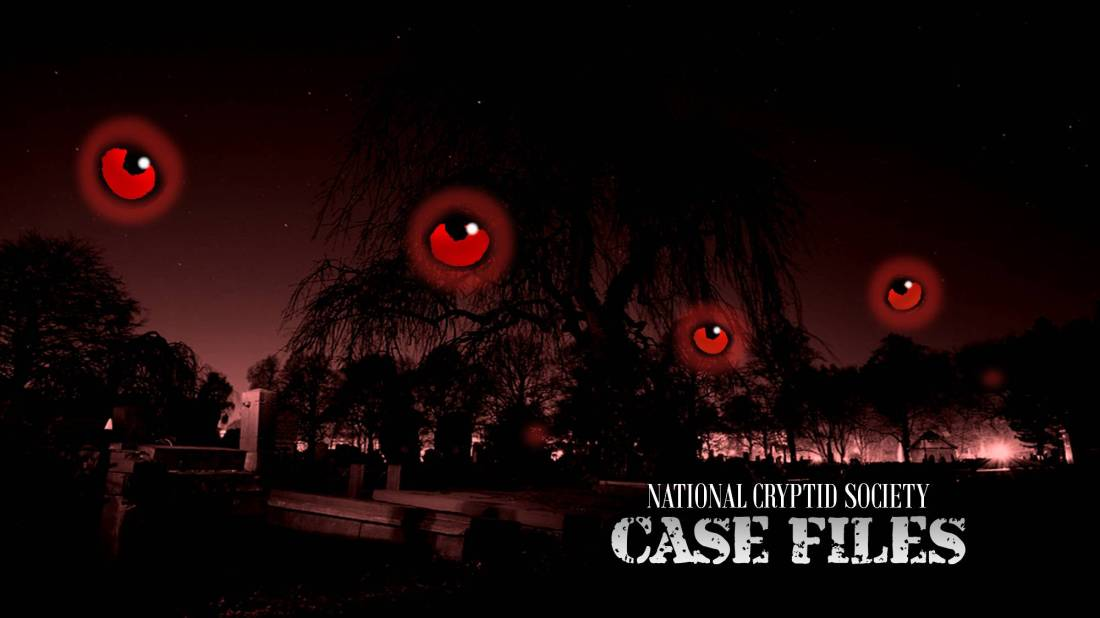 NCS Case File 32