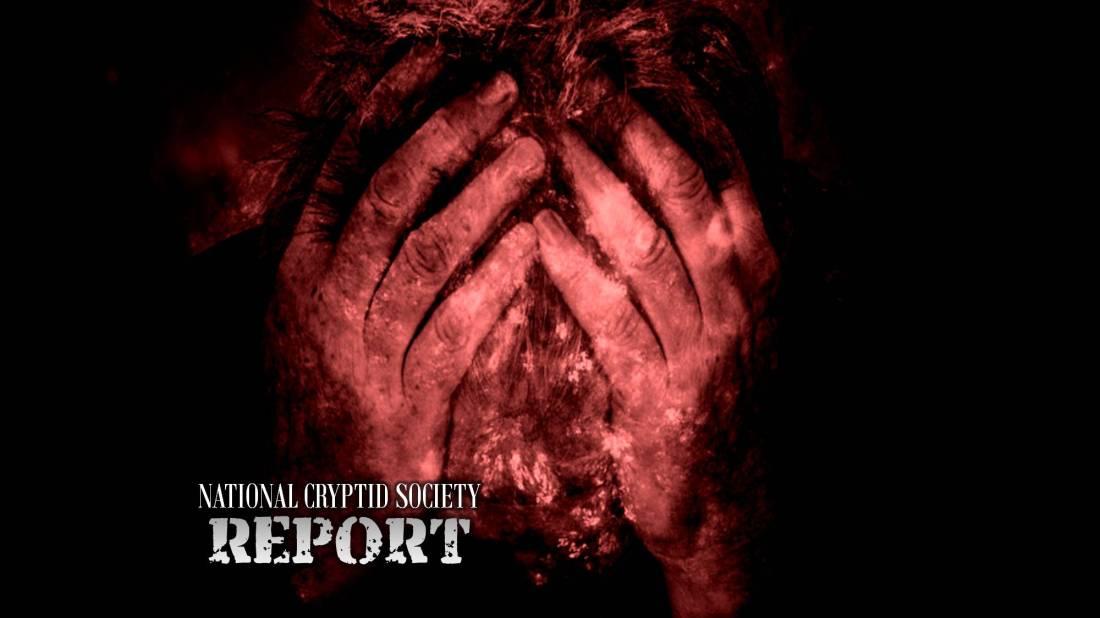 NCS Report