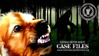 NCS Case File 40