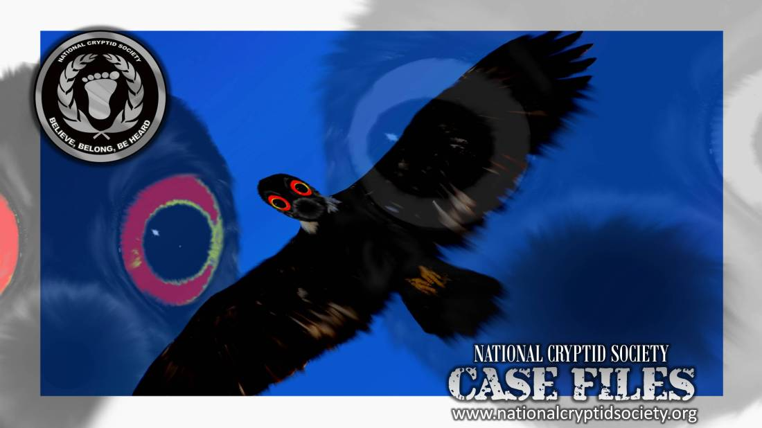 NCS Case File 45