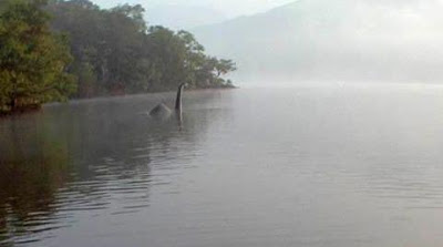 web2b-2bbownessie-gallery2bautographer2bphoto